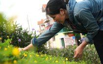 phu-nu-phu-dong-xay-dung-duong-hoa-kieu-mau-chao-mung-dai-hoi-dang-cac-cap-15942151082161380155327-0-0-1042-1666-crop-159421512353744277314