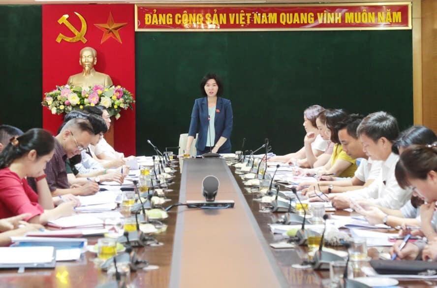 Đồng chí Phùng Thị Hồng Hà - Phó Chủ tịch Hội đồng nhân dân thành phố phát biểu tại buổi làm việc